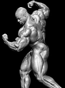 big ronnie coleman