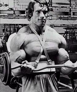 curl de biceps con arnold schwarzenegger
