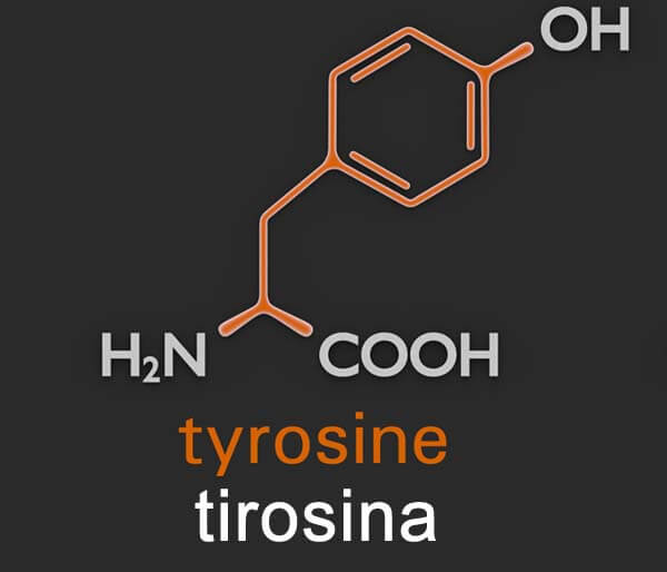 que es la tirosina y suplementos