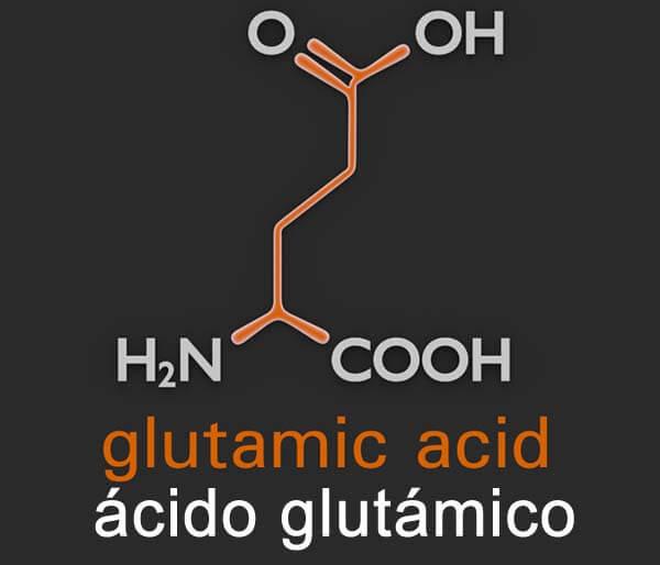 que es acido glutamico suplementos en forma libre