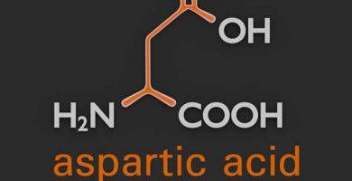 que es el acido aspartico y para que sirve