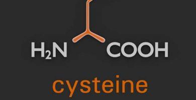que es la cisteina y suplementos NAC