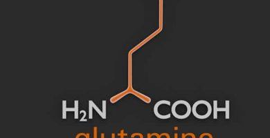 que es la glutamina suplementos en forma libre
