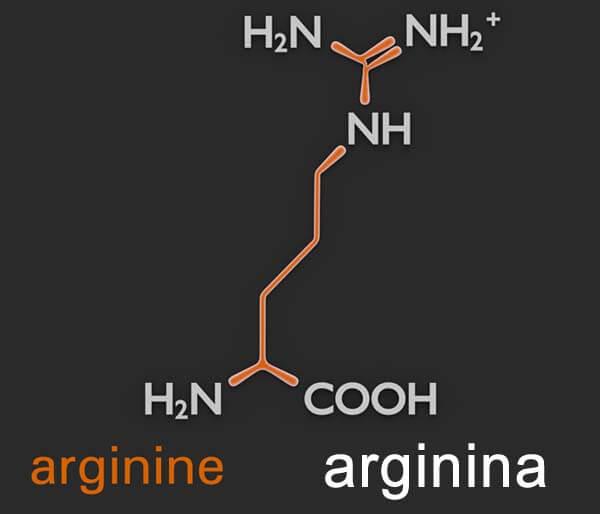 suplemento arginina en forma libre beneficios