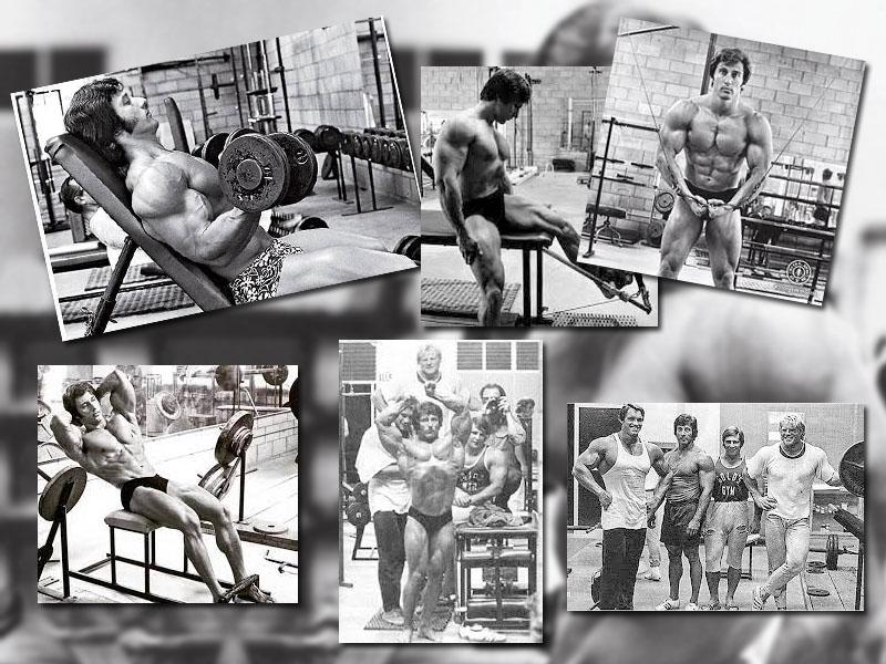entrenamientos de Frank Zane