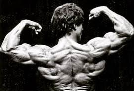 espalda de Frank Zane