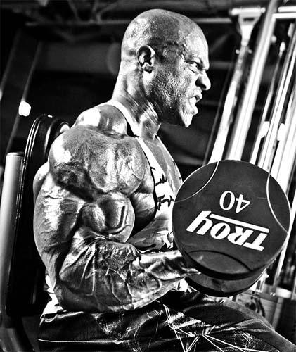 biceps de phil heath